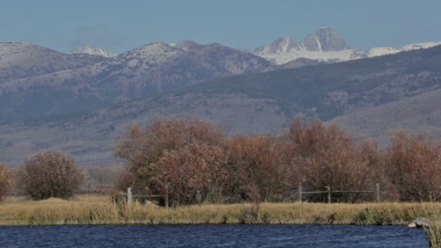 vídeos y material grabado en eventos de stock de the snake river in idaho with the teton mountain range in background - río snake