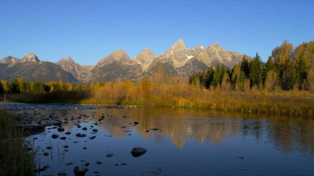 the snake river reflects autumn trees and schwabacher's landing in grand teton national park. - grand teton national park bildbanksvideor och videomaterial från bakom kulisserna