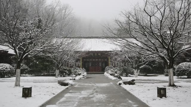 the snowscape of a chinese style garden in wansong academy,hangzhou,zhejiang,china - butterfly garden stock videos & royalty-free footage