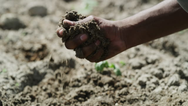 the soil is given to us for cropping, not polluting - soil stock videos & royalty-free footage