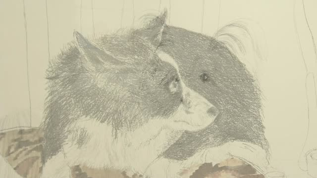 the special bond between dogs and their owners inspire portraits by painter david remfry; england: surrey: woking: int art exhibition showing... - alan cumming stock videos & royalty-free footage