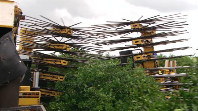vídeos de stock, filmes e b-roll de the spokes on a harvesting machine rotate to detach oranges from trees. - pomar