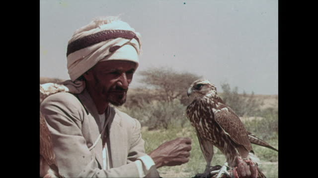 The sport of hawking / Men in the desert with hawks