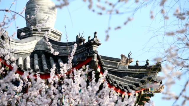 De lente van Peking het Zomerpaleis