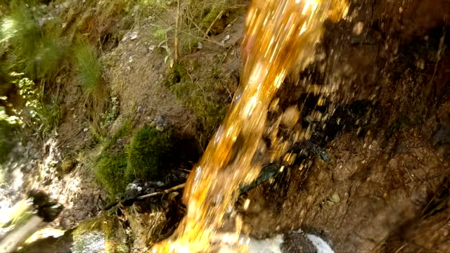 the stinks of dirty water in the forest - imperfection stock videos & royalty-free footage