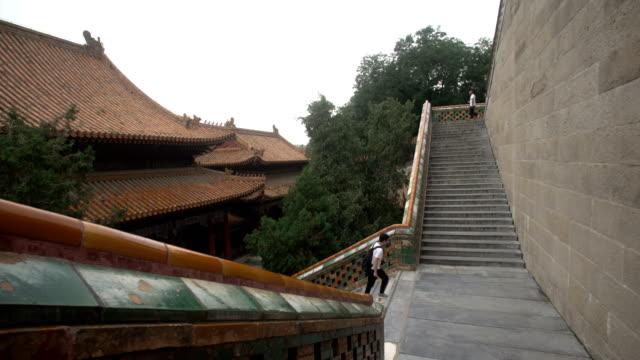 the summer palace in summer - durevolezza video stock e b–roll