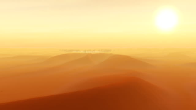 vídeos y material grabado en eventos de stock de the sun beats down on an oasis in an egyptian desert. - oasis desierto