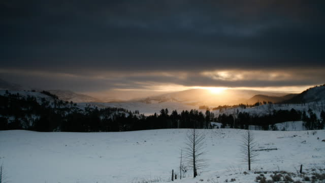 The sun rises behind mountains as a wolf pack forages in snow.