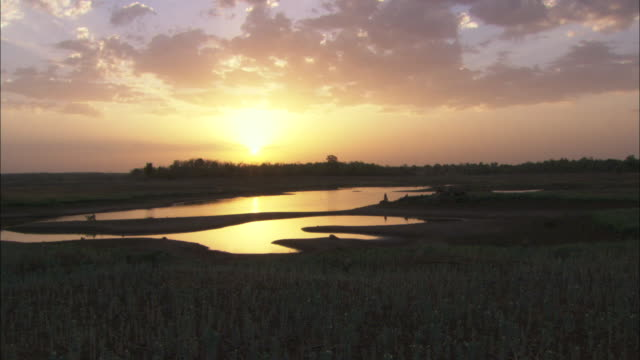 the sun rises over a forest and lake. - madhya pradesh stock videos and b-roll footage