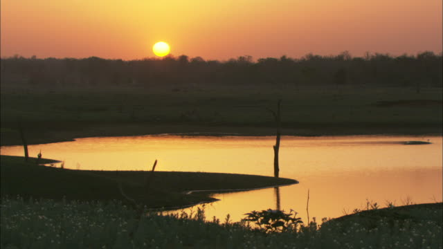 the sun rises over a lake and a forest. - madhya pradesh stock videos and b-roll footage
