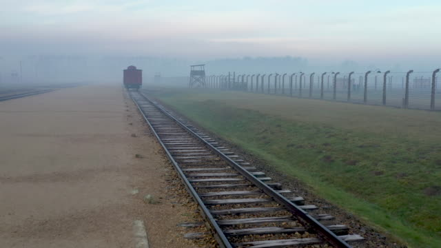 the sun rises over the early morning mist blanketing the barbed wire electrified fence that surrounds the auschwitz ii-birkenau extermination camp on... - history stock videos & royalty-free footage