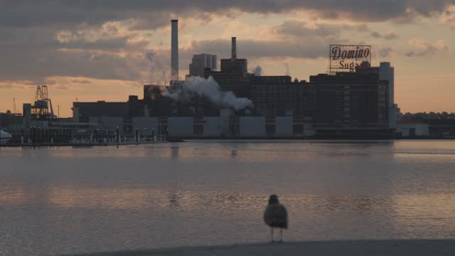 the sun rises over the inner harbor on january 22, 2020 in baltimore, maryland. there have been 334,519 cases of coronavirus and 6,735 deaths in... - bright colour stock videos & royalty-free footage