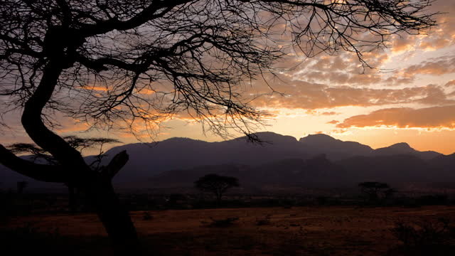 the sun sets on the sandy plains with acacia trees against the view on the mountains in wamba, kenya on july 13, 2019. - sunset stock videos & royalty-free footage