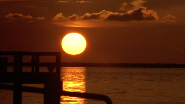 the sun sets over the ocean. - palme stock-videos und b-roll-filmmaterial
