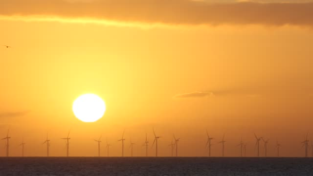 the sun setting behind the walney offshore wind farm taken from walney island cumbria uk - water bird stock videos & royalty-free footage