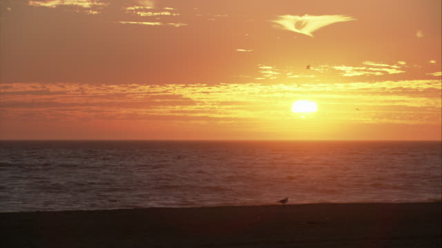 WS The sun setting over the ocean in Malibu / California