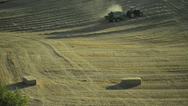 the sun shines on a field of barley before harvesting in cervera high angle views a farmer uses a john deere 1424 baler machine to make hay bales in... - hay baler stock videos & royalty-free footage