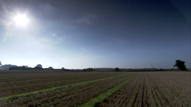 the sun shines on an east anglia field. available in hd. - east anglia stock-videos und b-roll-filmmaterial