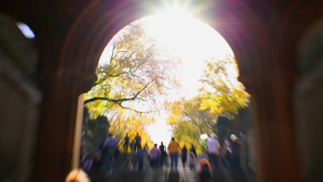 vídeos y material grabado en eventos de stock de the sunlight illuminates the autumn color trees at the mall and people walk on the stairs of the bethesda terrace at central park new york ny usa on nov. 01 2018. - fuente bethesda