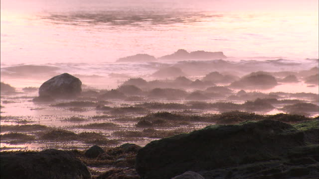 the surf along the sea of japan glows pink during a sunrise. - toyama prefecture stock videos and b-roll footage