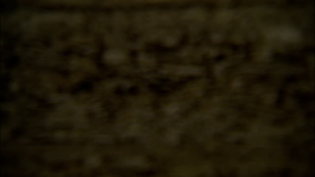 the surface of a sheet of particleboard has a grainy texture. - grobkörnig stock-videos und b-roll-filmmaterial