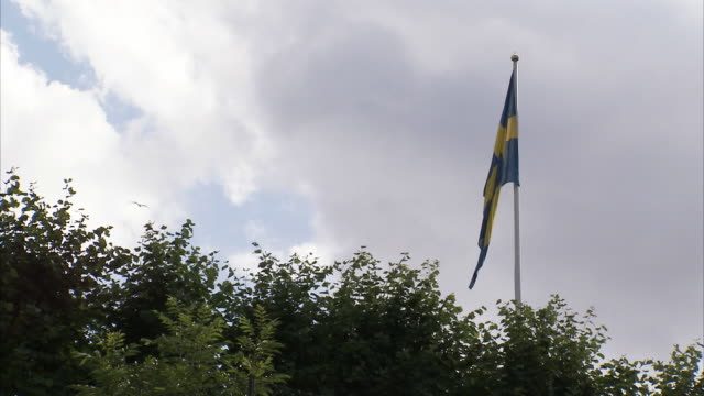 the swedish flag against a cloudy sky, sweden. - swedish flag stock videos and b-roll footage