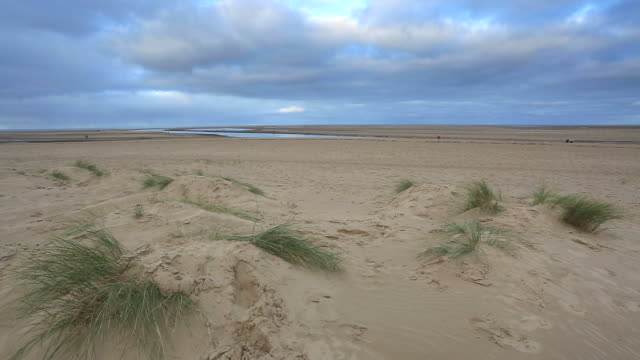 the sweeping beach and sand dunes at wells town, norfolk, england, uk - coastal feature stock videos & royalty-free footage