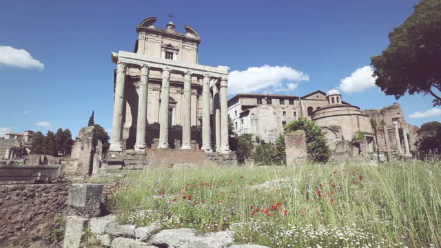 The Temple of Antoninus and Faustina in Roman forum