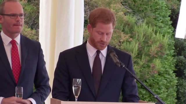 The The Duke of Sussex gives a speech at a garden party in Dublin during Harry and Meghan's first overseas trip as a married couple