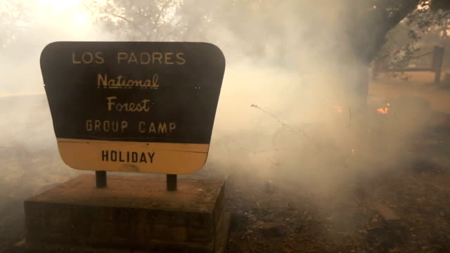 stockvideo's en b-roll-footage met the thomas fire burns on december 8, 2017 in los padres national forest, california. the fire has destroyed 439 structures and burned 132,000 acres. - padre