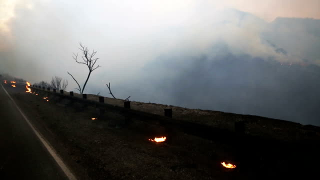 stockvideo's en b-roll-footage met the thomas fire burns on december 8 2017 in los padres national forest california the fire has destroyed 439 structures and burned 132000 acres - padre
