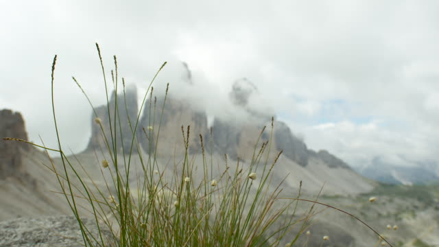 the three peaks in the background - tre cimo di lavaredo stock videos & royalty-free footage