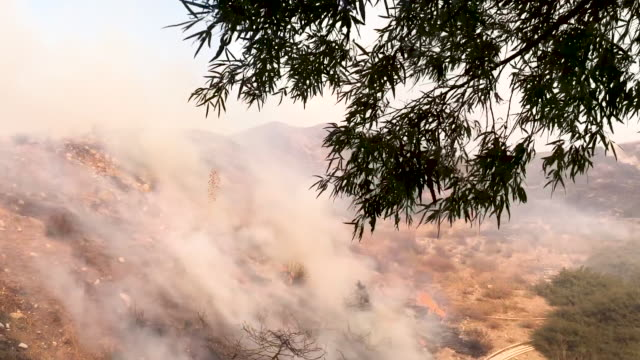 the tick fire burns on october 24 2019 in canyon country california the fire has burned 3950 acres thus far while prompting thousands of evacuations - santa clarita video stock e b–roll