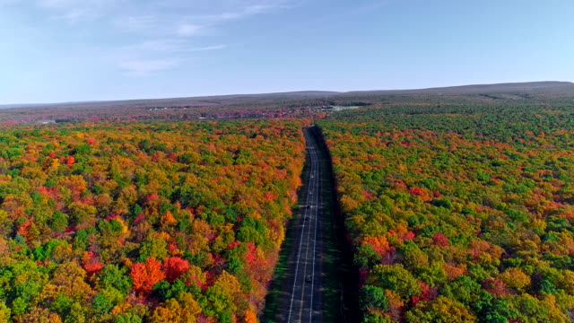 stockvideo's en b-roll-footage met het bovenaanzicht op de weg in de bergbos in appalachian, poconos, pennsylvania, met fall gebladerte. luchtfoto drone video. - pennsylvania