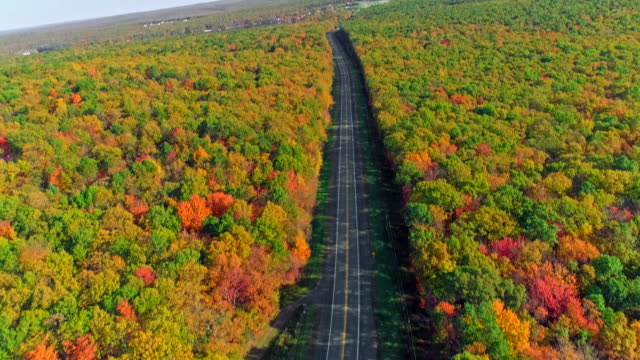 the top view on the road in the mountain's forest in appalachian, poconos, pennsylvania, with fall foliage. aerial drone video. - following moving activity stock videos & royalty-free footage