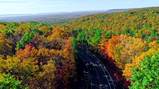 the top view on the road in the mountain's forest in appalachian, poconos, pennsylvania, with fall foliage. aerial drone video. - yellow stock videos & royalty-free footage