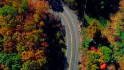 The top view on the road in the mountain's forest in Appalachian, Poconos, Pennsylvania, with fall foliage. Aerial drone video.