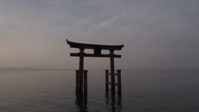 the torii gate of shirahige-jinja shrine(famous place for sunrise) floating in biwa lake, takashima, shiga prefecture, japan - giappone video stock e b–roll