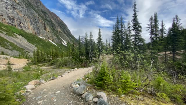 the trail to mount edith cavell in jasper national park, alberta, canada - maligne river stock videos & royalty-free footage