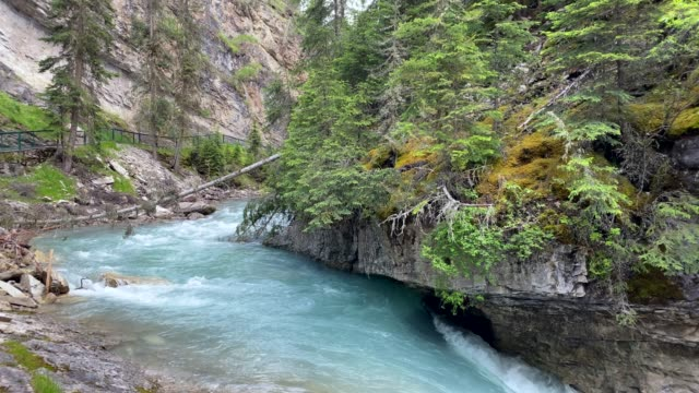the trail to the waterfalls of johnston canyon, banff national park, alberta, canada - flowing stock videos & royalty-free footage