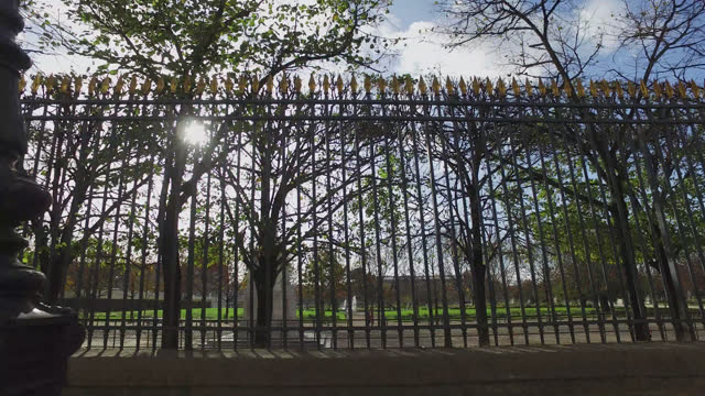 the tuileries garden in paris, france. france has imposed another national lockdown for a minimum of four weeks as the number of coronavirus cases... - shiny stock videos & royalty-free footage