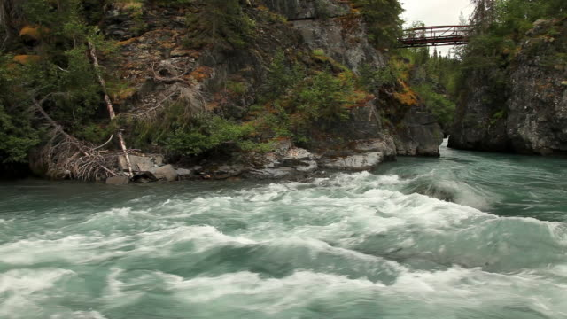 the turbulent waters of six mile creek churn past rock walls in chugach national forest, alaska. - chugach national forest stock videos & royalty-free footage
