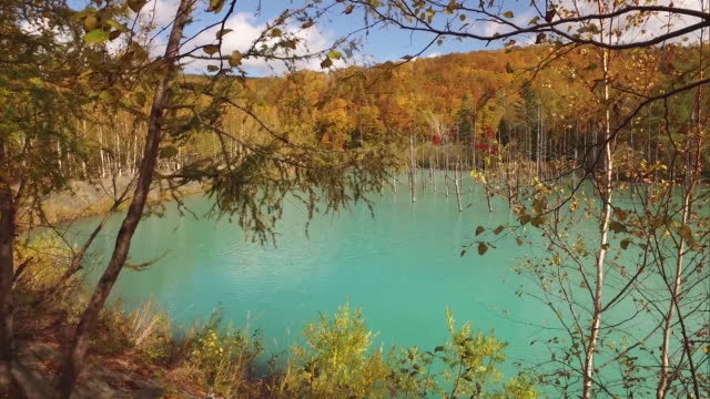 the turquoise blue surface of shirogane blue pond - biei town stock videos & royalty-free footage