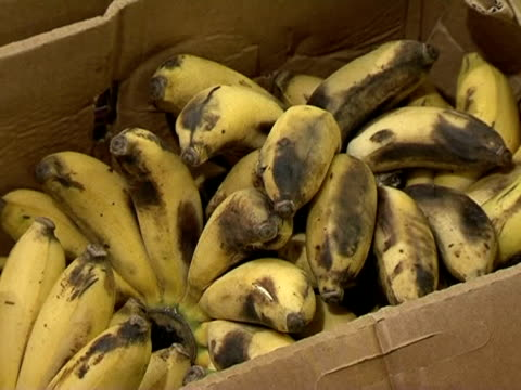 the uk flight ban is starting to ease but traders who sell exotic fresh fruit and vegetables from around the world have been unable to receive... - greater london stock videos and b-roll footage
