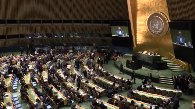 The UN General Assembly adopts a resolution on September 10 2015 that will allow the Palestinian flag to be raised at the world body's headquarters...