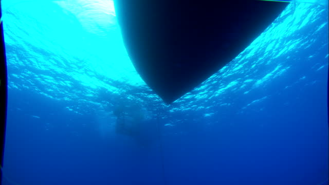 the underside of a boat is seen from underwater. available in hd. - 船体点の映像素材/bロール