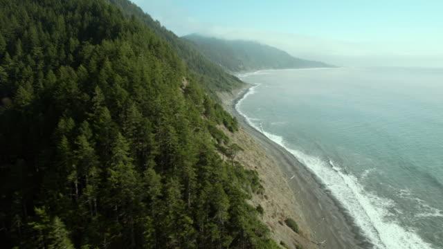 The undeveloped coastline of California's Lost Coast.