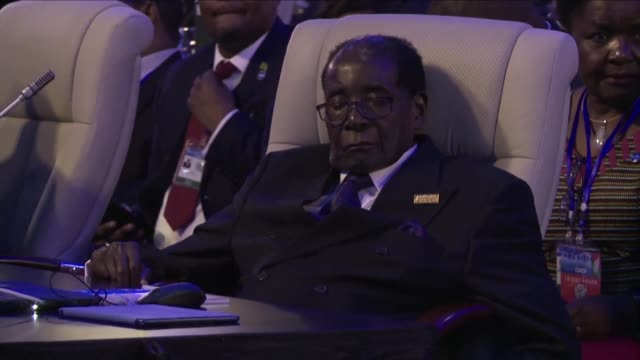 The United Nations has come under criticism after naming Zimbabwean President Robert Mugabe a goodwill ambassador to promote health causes despite...