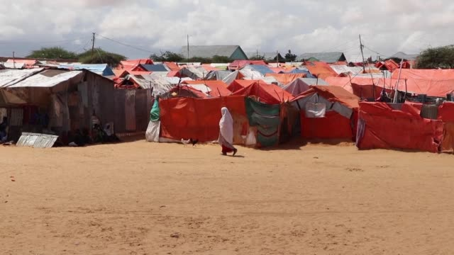 the united nations has warned that the harsh drought conditions in parts of somalia are likely to cause a major humanitarian crisis if urgent action... - horn of africa stock videos & royalty-free footage