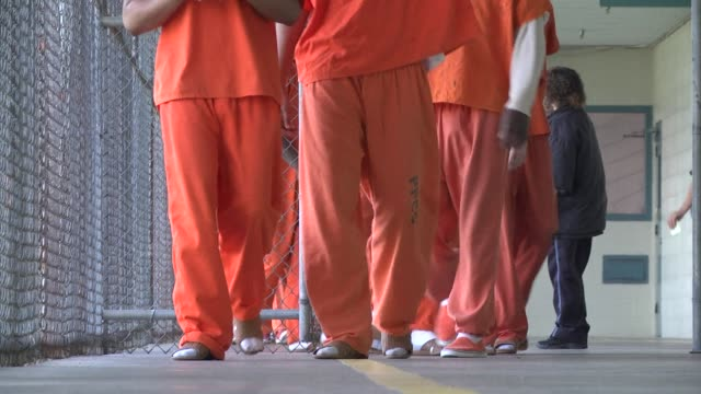 stockvideo's en b-roll-footage met the us state of louisiana has the highest incarceration rate in the world voiced private prisons in the worlds on december 03 2013 in louisiana... - gevangenis